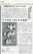 日本経済新聞 2005年4月16日